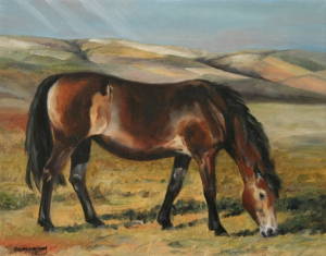 exmoore-pony-18x17-framed-oil-900